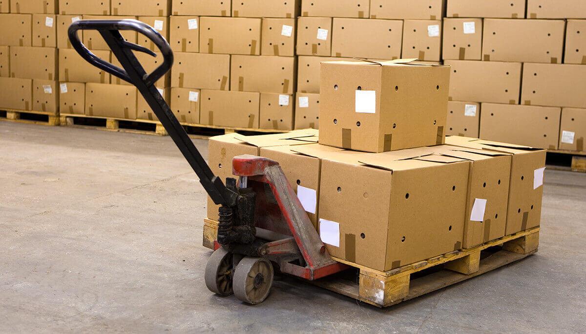 перевозка грузов вологда услуги по перевозке россии стоимость перевозки оказание услуг
